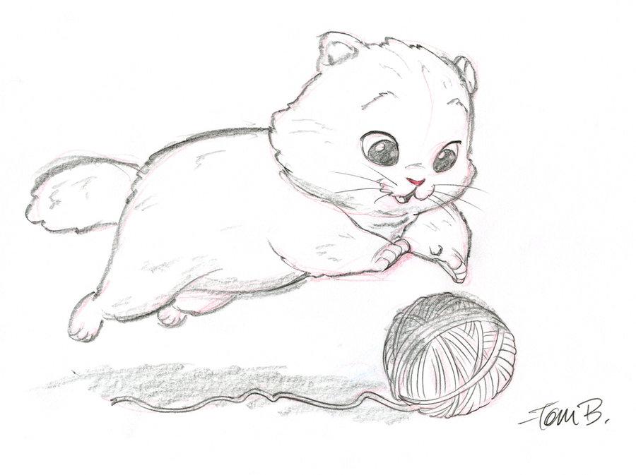 Картинки милых котят карандашом
